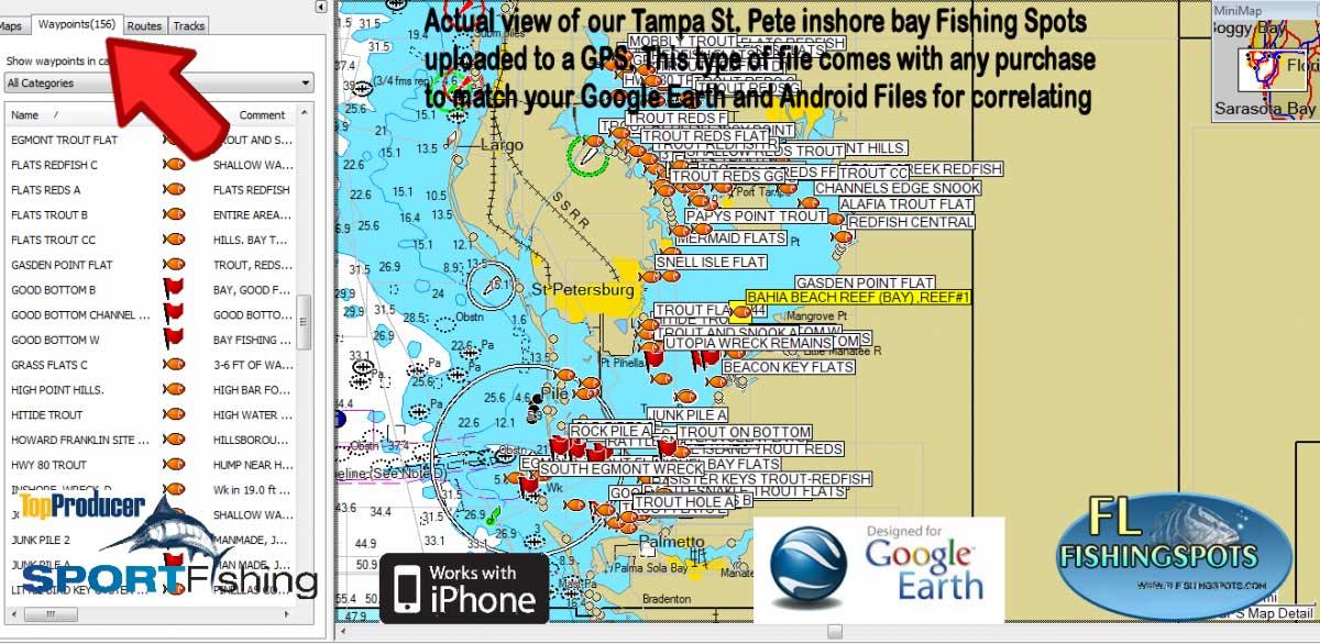 Tampa Bay Florida Fishing Spots