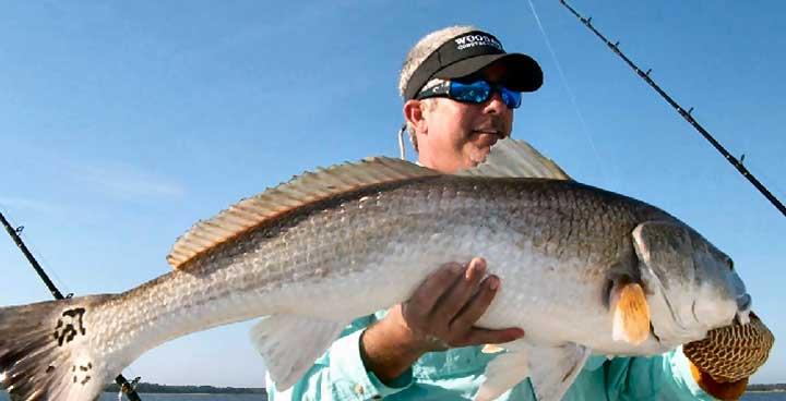 Tampa bay fishing spots map florida gulf fishing spots for Tampa bay fish