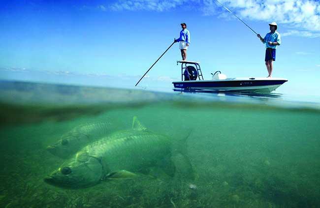 Flamingo florida fishing spots florida fishing maps for gps for Fishing spots in florida