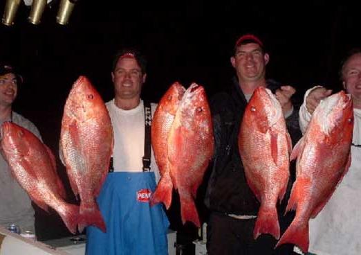Florida middle grounds fishing spots gulf gps fishing spots for St augustine fishing spots