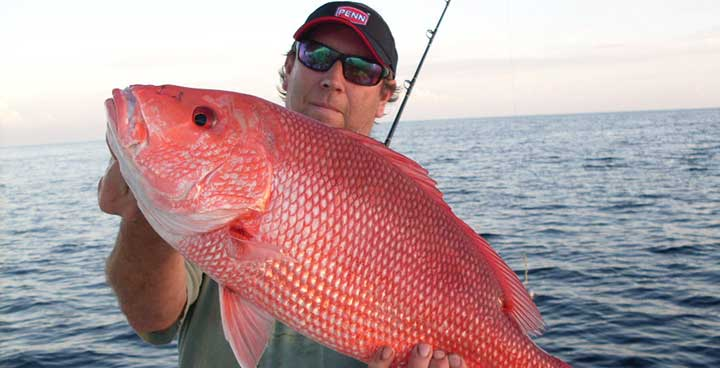 Snapper Fishing Spots in Florida