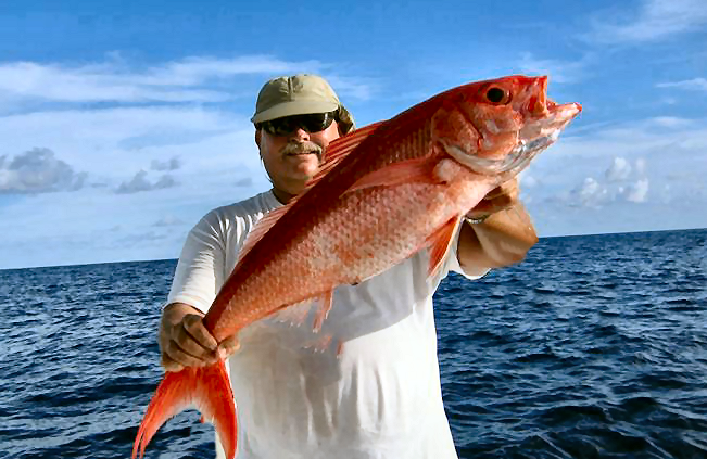 Florida Deep Drop Fishing for Queen Snapper