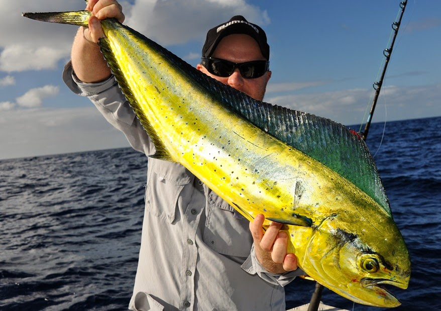 Fort Pierce Offshore Fishing Spots