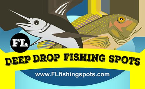 deep-drop-fishing-logo